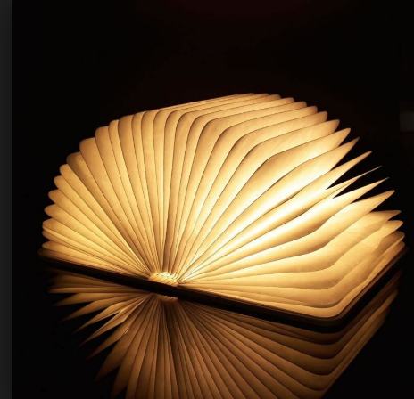 Gingko Mini Smart Book Light Walnoot